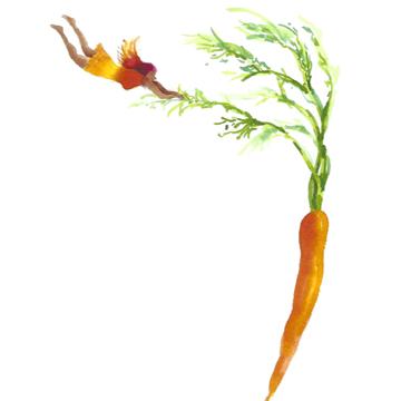 carrotgirl